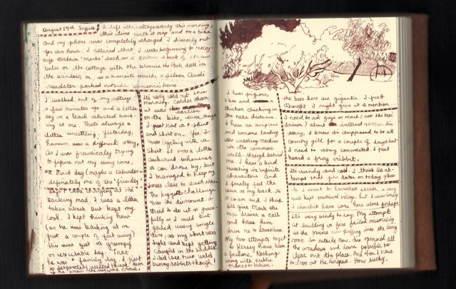 diary august 17 2013