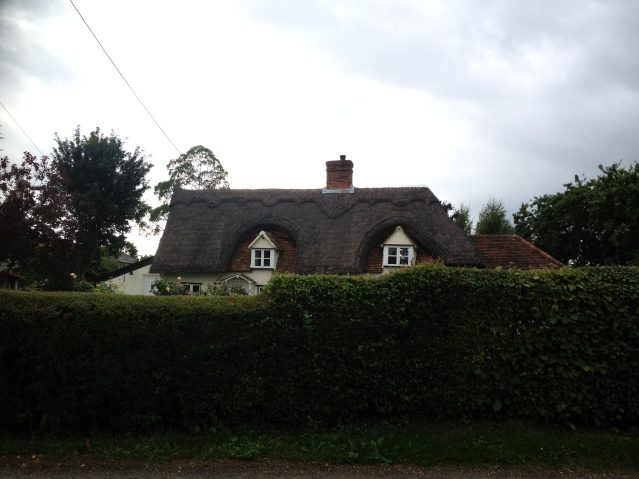 peekaboo house with a lovely thatched roof