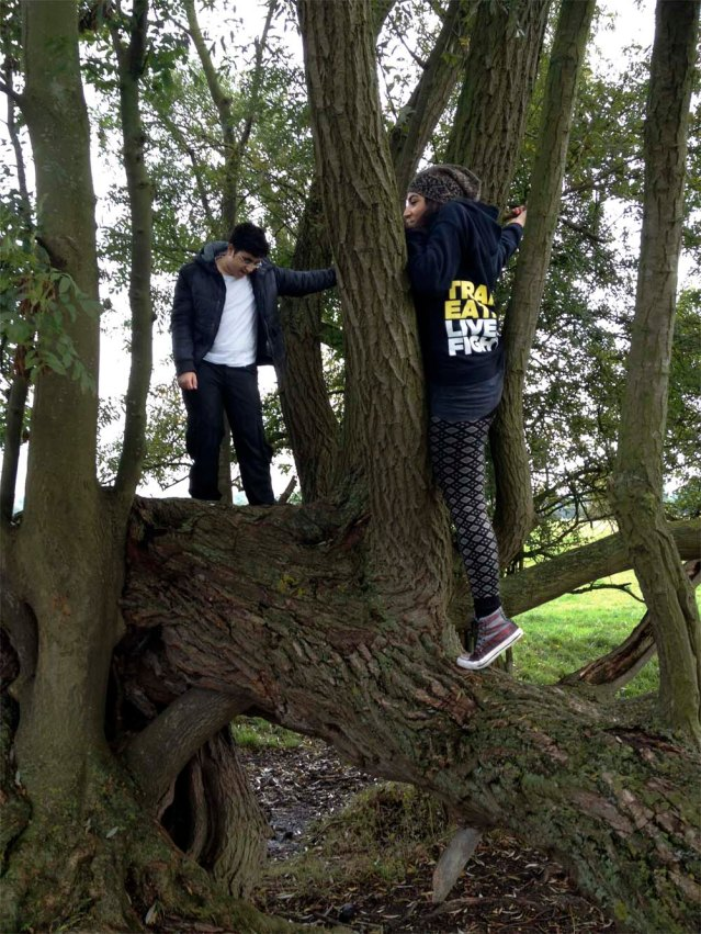 yasmine got stuck in this tree...