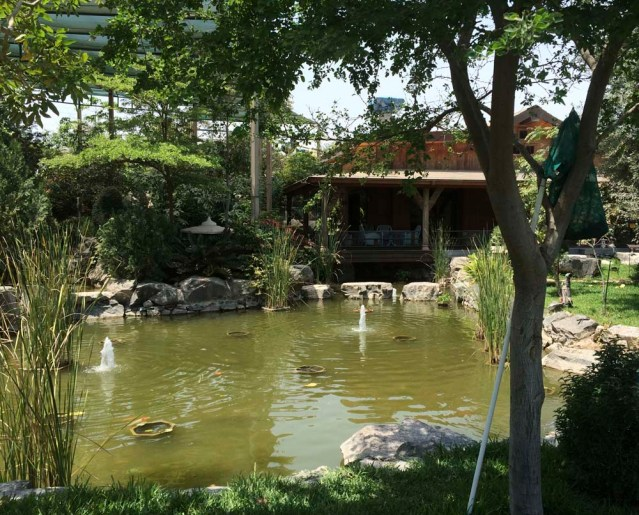 the lodge and koi pond