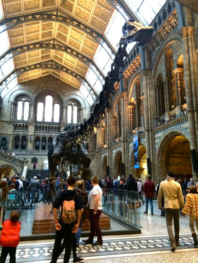 a brontosaurus. i love this museum and i love the building itself