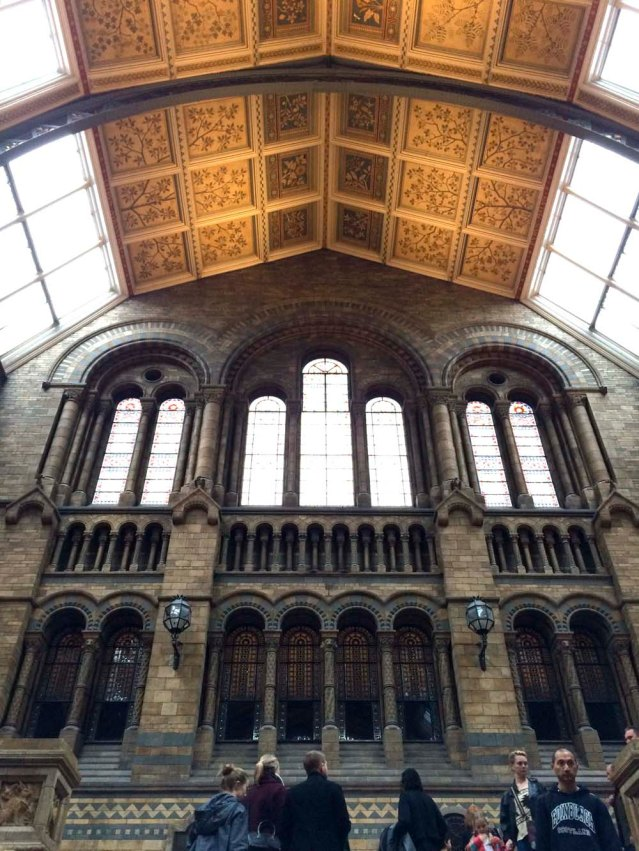 i love this ceiling and these windows and these arches