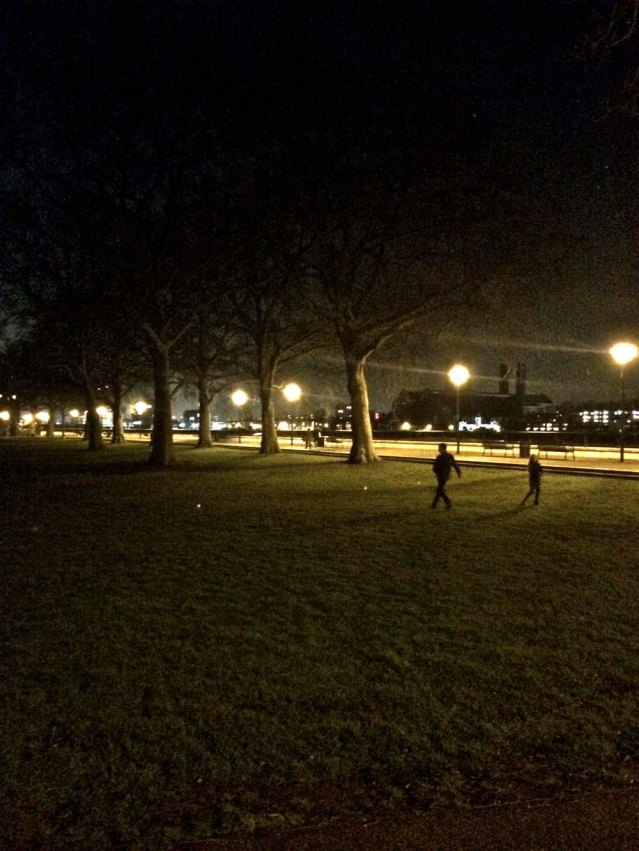 the island gardens. it was biting cold that night