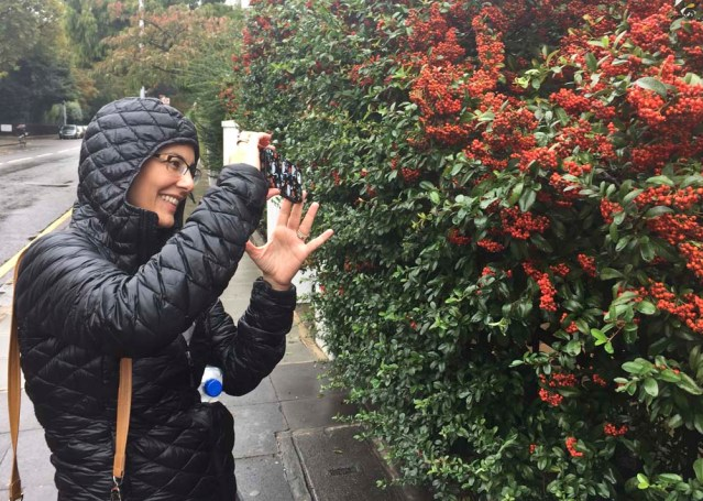 mai captures berries on sydney street